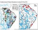Susihavaintojen määrä Pohjois-Karjalassa on laskenut roimasti.